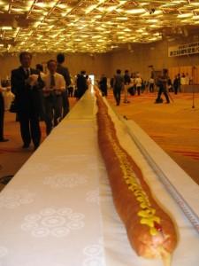 180-foot-long-hot-dog
